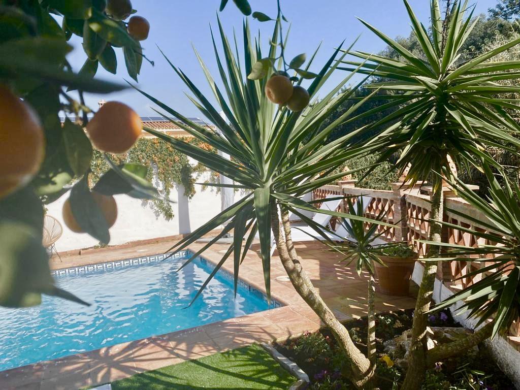 Villa To Rent Close To Puerto Banus
